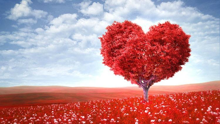 Qu'est-ce qu'aimer Dieu ? Et comment l'aimer ?