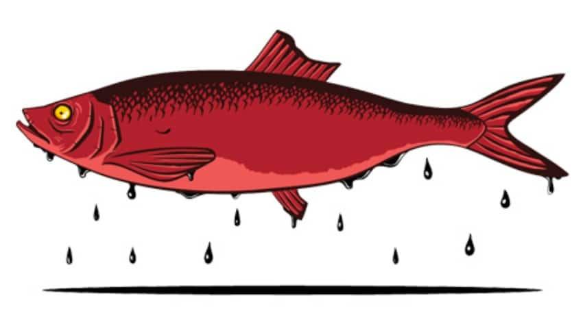 Comment répondre à ... un hareng rouge ?  www.leboncombat.fr